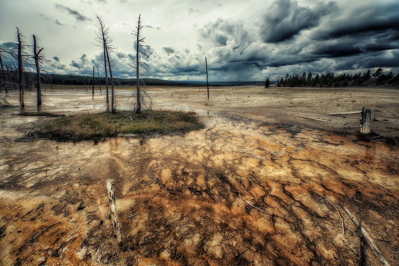 La desolazione di Yellowstone di Patrix