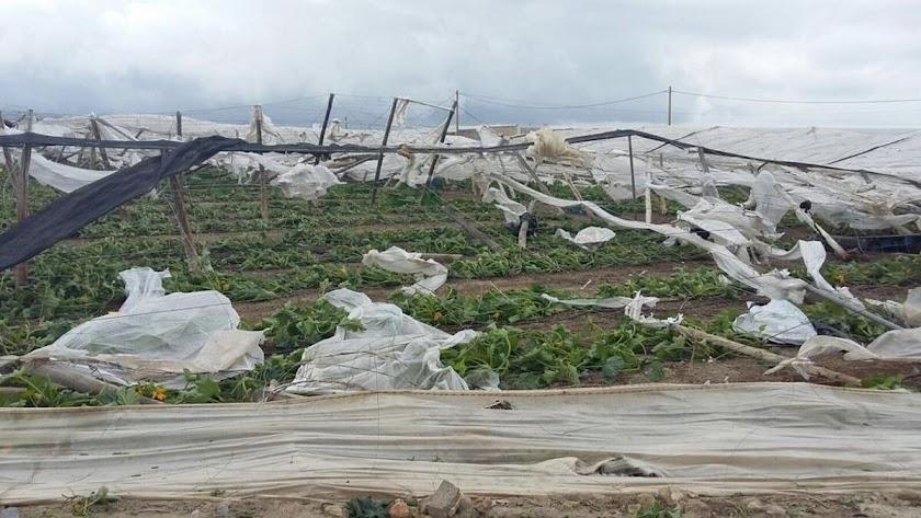 Imagen de archivo de invernaderos destrozados por el viento en El Ejido.
