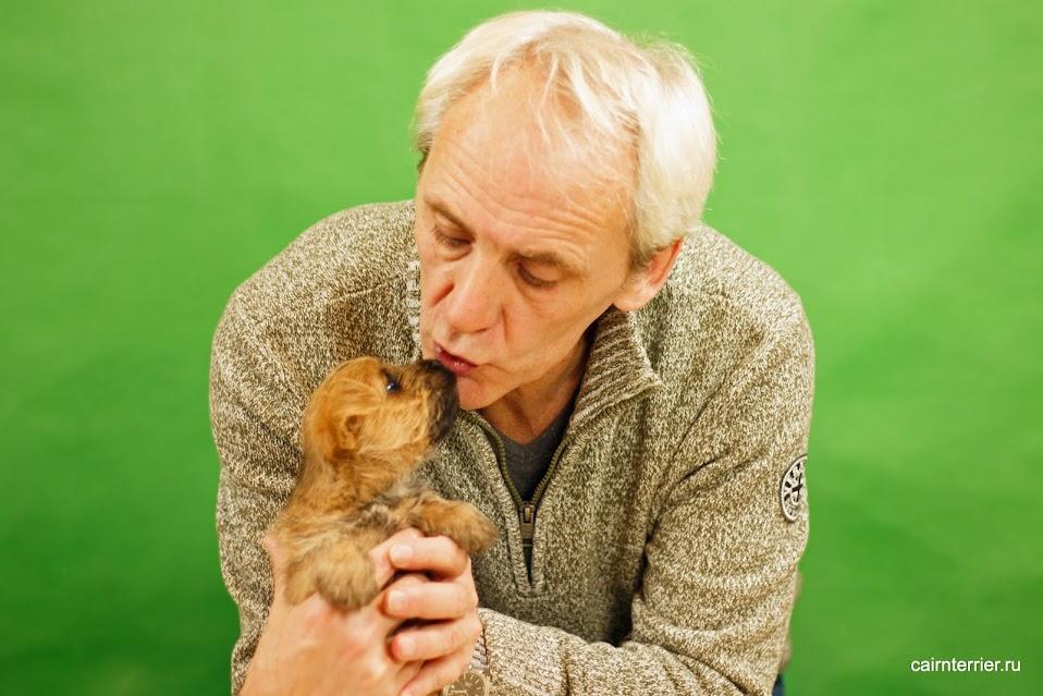 Фото пшеничного щенка керн терьера с хозяином помёта Н