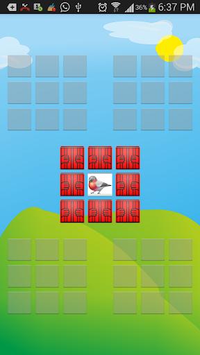 Free Bird Game
