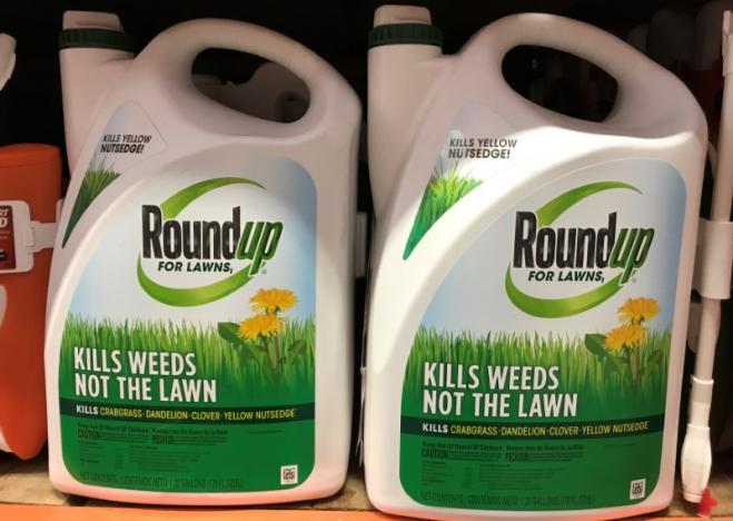 Monsanto Co's Roundup is shown for sale in Encinitas, California. Picture: REUTERS