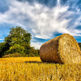 Colourful Bale by Adrian Wilson - Landscapes Prairies, Meadows & Fields ( round bale, sky, yorkshire, big bale, straw, summer, round )