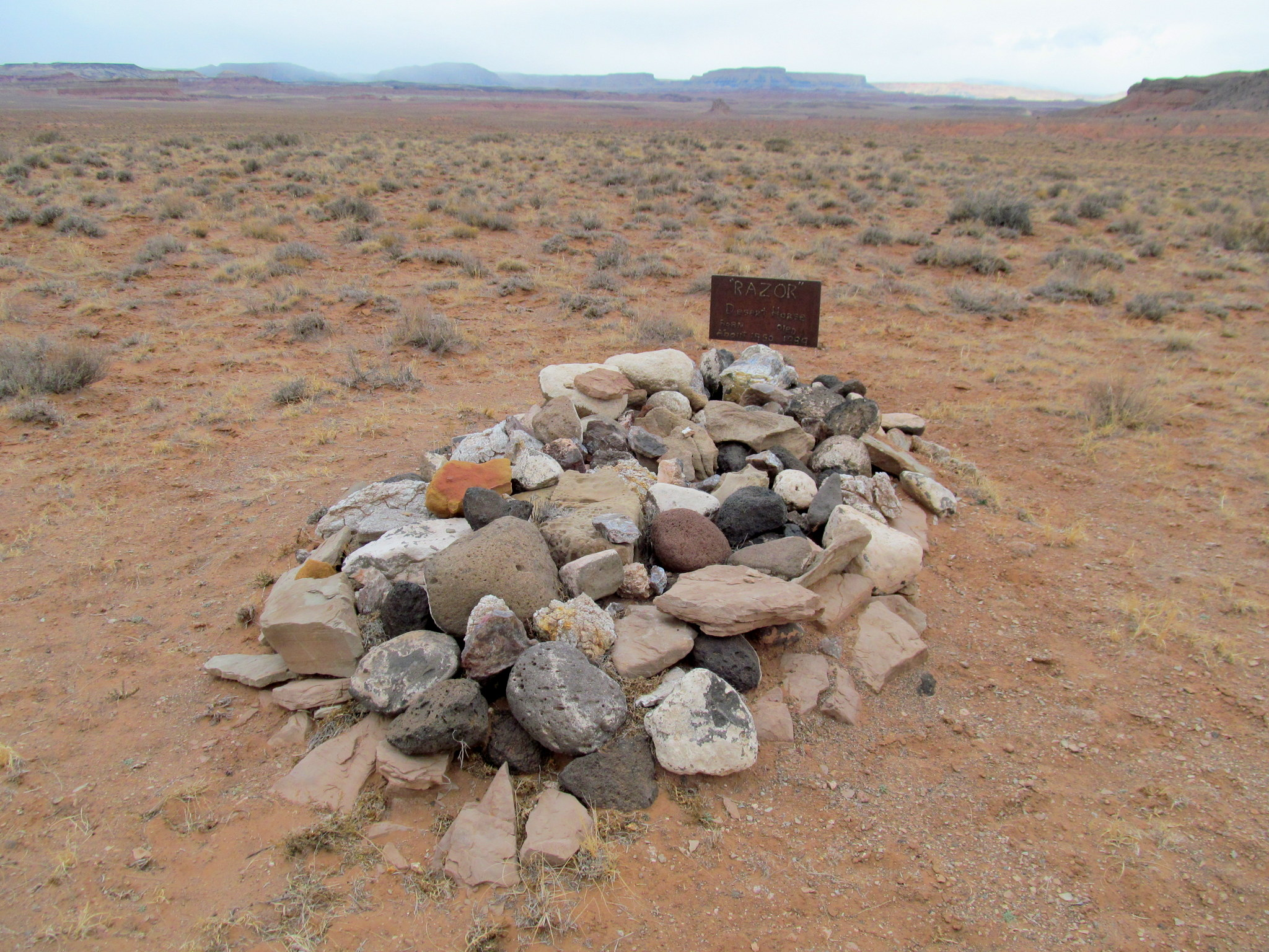 Photo: The grave of Razor, the desert horse