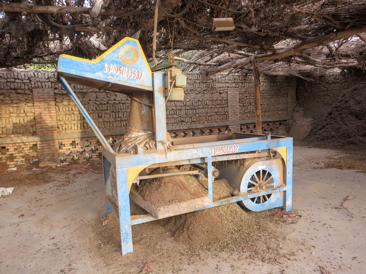China. Xinjiang Turpan . Dry Raisins Sorting Machine