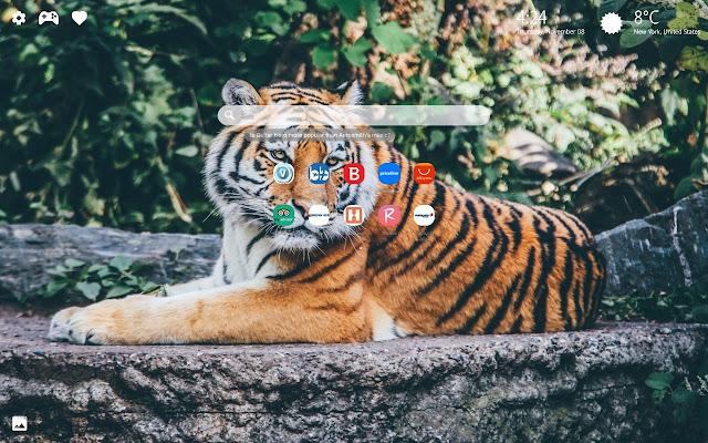 Wildlife World & Wildlife Wallpapers HD