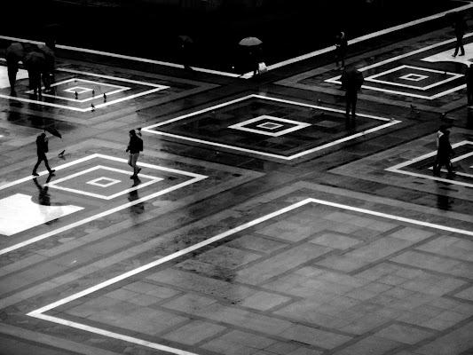 A spasso tra righe e riflessi... di Francesca Boschetti