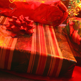 Christmas Presents by Bill Diller - Public Holidays Christmas ( christmas gifts, christmas tree, decorated tree, decorations, wrapped presents, christmas, wrapping paper, wrapped gifts, present, lights, presents, gifts, decorated christmas tree )