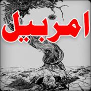 Amar Bail Novel