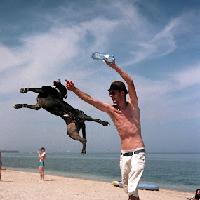 Dog Training by Adrian Popescu - Animals - Dogs Playing ( film, sand, 35 mm, guy, play, sea, beach, seaside, hat, playing, training, summer, dog, film is not dead,  )