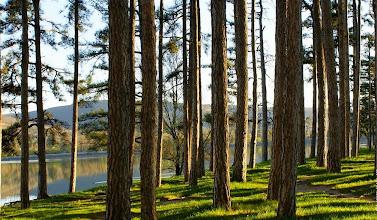 Photo: Le Lac de Saint-Ferréol (12|20|32)