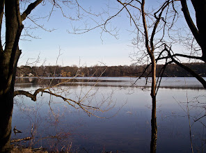 Photo: View of Cedar Lake from an offshoot of the Bog Trail