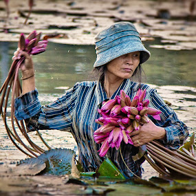 lotus picker  by Lester Woodward - People Street & Candids ( water, woman, candid, angkor, pink, wat, flower )