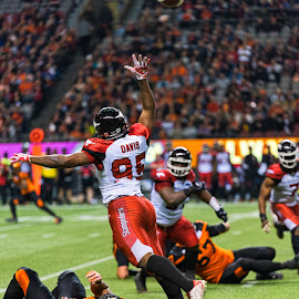 Out Of Reach by Garry Dosa - Sports & Fitness American and Canadian football ( sports, teams, players, professionals, cfl, black, reaching, football, lighting, people, orange, red, running, indoors, action, stadium )
