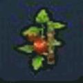 トマト(ビルダーハンマー)