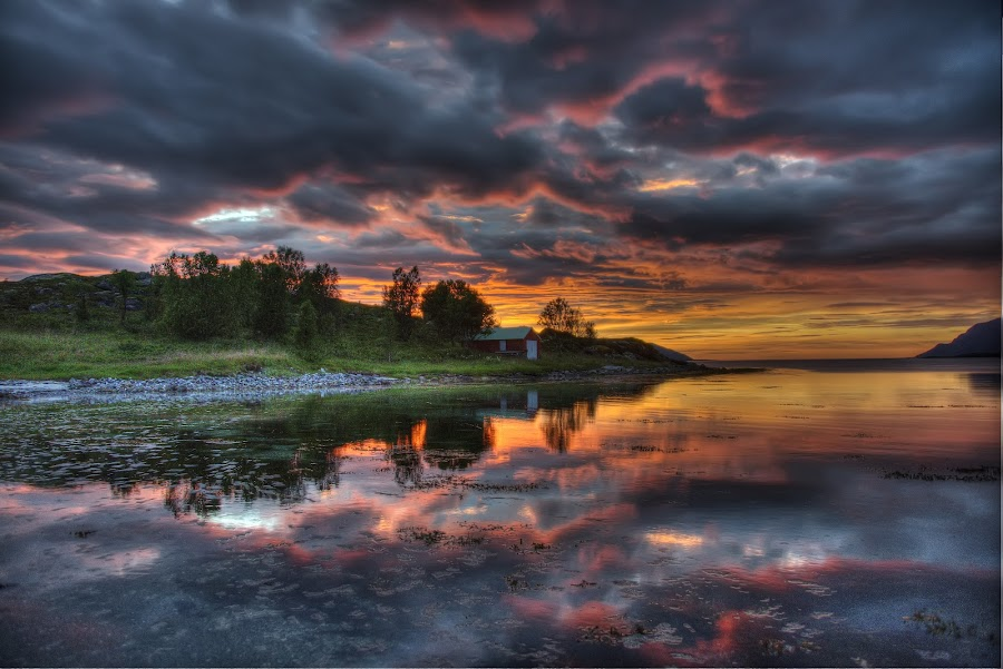 Arctic sunset by Marius Birkeland - Landscapes Sunsets & Sunrises ( clouds, reflection, sky, sunset, sea,  )