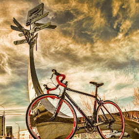 by Steel Hero - Transportation Bicycles