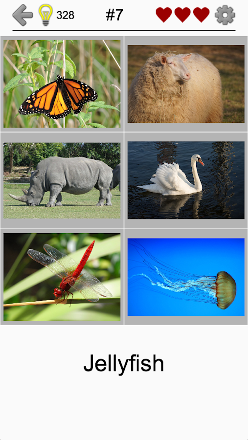 Easy Pictures - Photo-Quiz with 4 Different Topics- screenshot