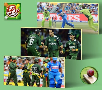PTV Sports Live App Download For Android 3