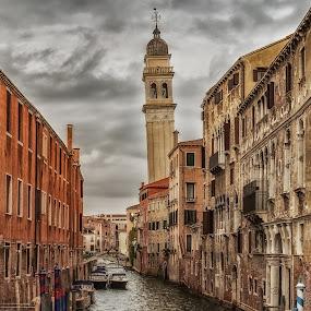 Venice by Angela Higgins - City,  Street & Park  Historic Districts