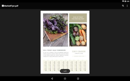 Google PDF Viewer screenshot 9