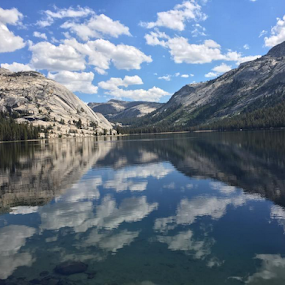 Glass View by Jennifer Watkins Odom - Landscapes Mountains & Hills ( water, mountains, yosemite, outdoors, trees )
