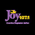 Joy Columbus 107.1 icon
