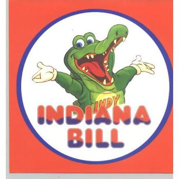 Indiana Bill Parque Infantil