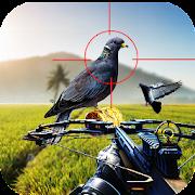 Pigeon Hunting 2018: Crossbow Birds Wings Shooting