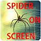 Spider On Screen (app)