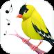 鳥の歌 - Androidアプリ