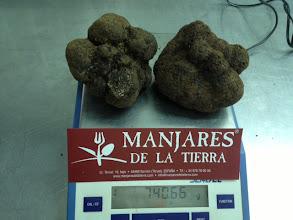 Photo: TRUFAS MANJARES DE LA TIERRA TUBER MELANOSPORUM