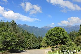 Photo: 拍攝地點: 梅峰-伴月坡 拍攝日期:2012_05_14_FY
