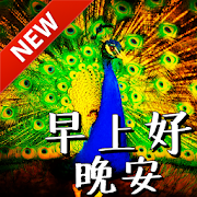 Chinese Good Morning & Good Night Wishes Love Android APK Free