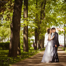 Wedding photographer Aleksey Avdeenko (Alert). Photo of 23.11.2016
