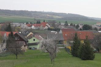 Photo: Za dedinou Edelstal vidno rozhľadňu na Königswarte