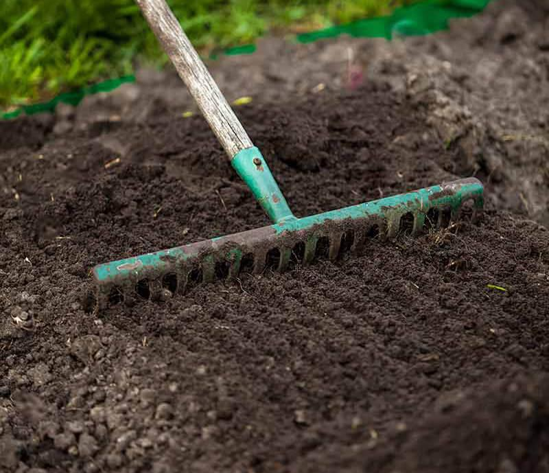 Image result for prepare soil for planting grass