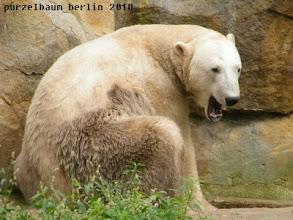 Photo: Noch sooo muede ;-)