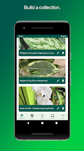 PlantSnap Pro - Identify Plants, Flowers & Trees Screenshot