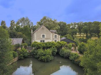 moulin à Loches (37)