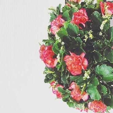 T flowers