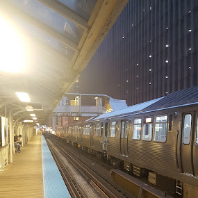 The L by Riddhima Chandra - Transportation Trains ( railway, travel, chicago, the l, train,  )