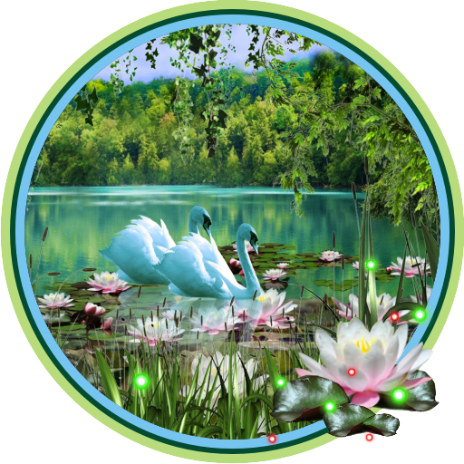 Swans and Lilies LWP