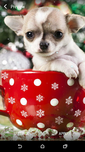 Christmas Animals LWP