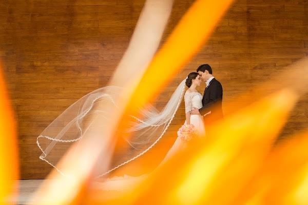 Wedding photographer Mino Mora (minomora). Photo of 17.05.2016
