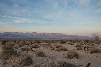 Photo: Anza Borrego SP