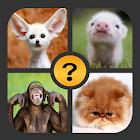 4 Bilder 1 Wort icon