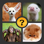 4 Pictures 1 Word Icon