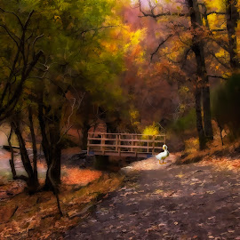 Otoño by Daly Sda - Illustration Flowers & Nature ( countryside, autumn, colors, landscape, leaves,  )