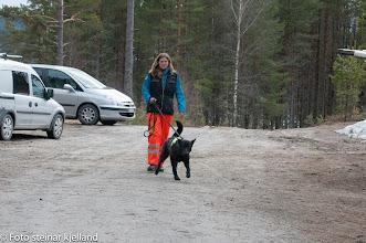Photo: Ulvehiets Back in Black (Vilma) og Aina er klare til å rundere!