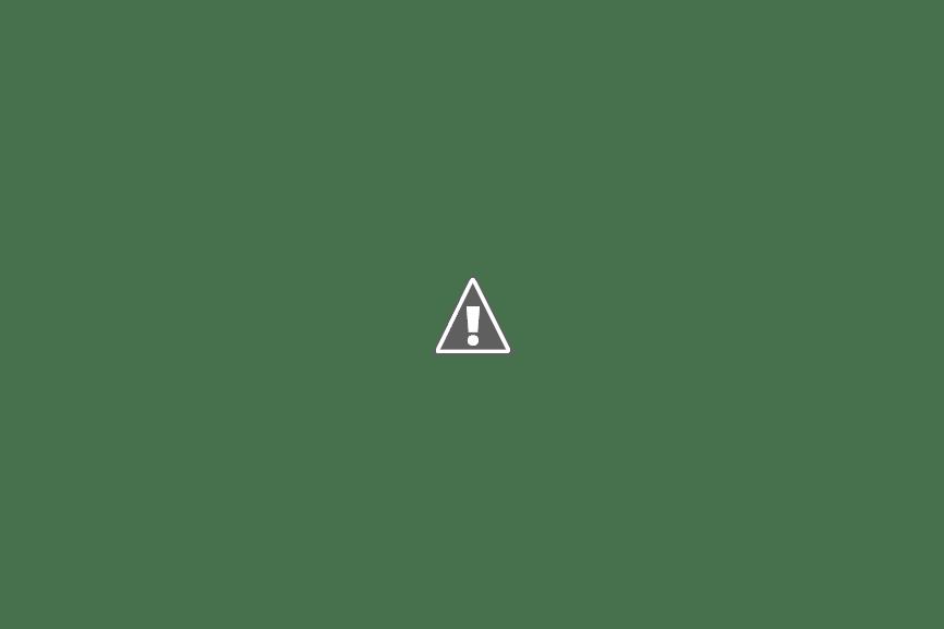 Royal Ontario Museum (ROM) [2013]